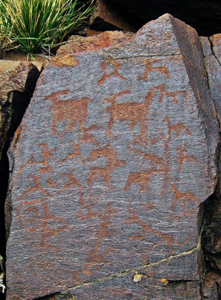 надписи зайсана